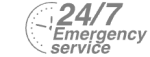 24/7 Emergency Service Pest Control in Newbury Park, Gants Hill, IG2. Call Now! 020 8166 9746