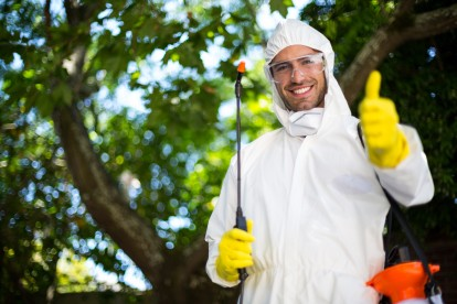 Pest Control in Newbury Park, Gants Hill, IG2. Call Now 020 8166 9746
